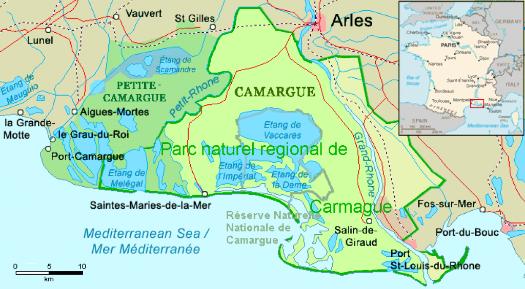 What to Do in Camargue, France